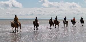 Balade à cheval près des plages du débarquement
