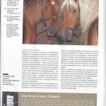 Article-Sabots 04b