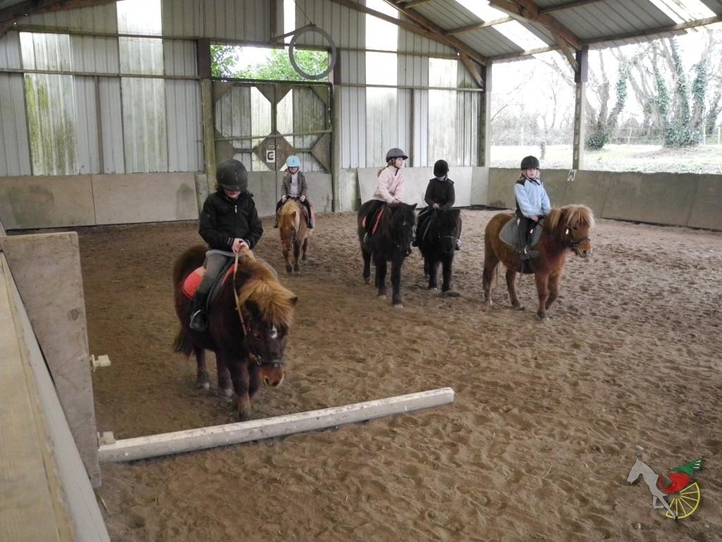 Cours de poney dans le manège